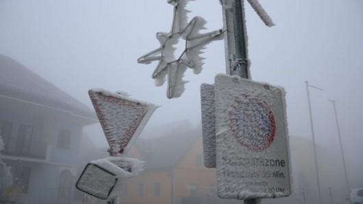 Austria - Ogromne straty w rolnictwie z powodu mrozów i obfitych opadów śniegu -5