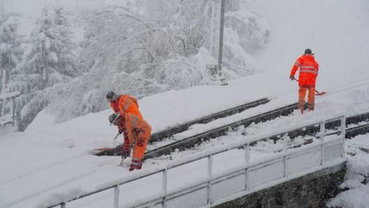 Austria - Ogromne straty w rolnictwie z powodu mrozów i obfitych opadów śniegu -8