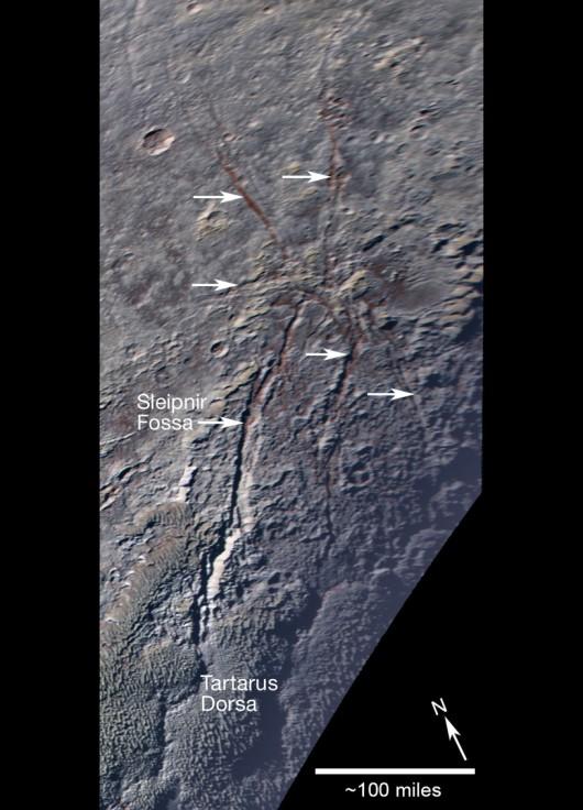 Lodowy pająk na Plutonie