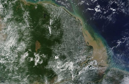 Naukowcy odkryli ogromną rafę koralową