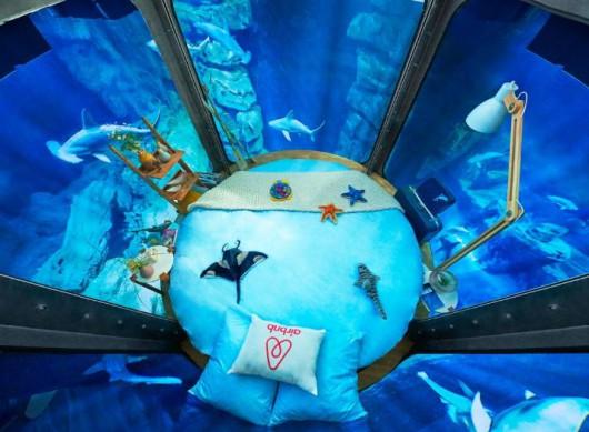 Nocleg pod wodą w towarzystwie rekinów