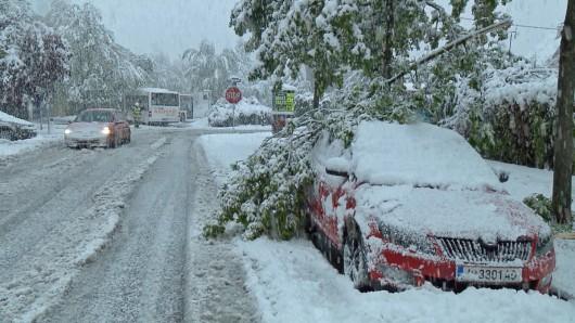 Ogromne śnieżyce w Austrii, dziesiątki tysięcy domów bez prądu -13