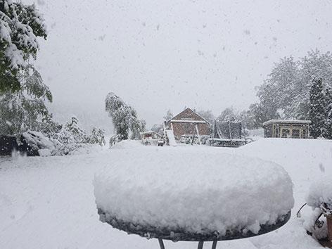 Ogromne śnieżyce w Austrii, dziesiątki tysięcy domów bez prądu -5