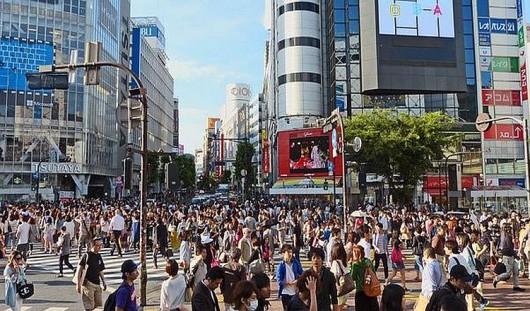 Organizacja prowadząca badania twierdzi, że rząd w Tokio nie zna skali problemu