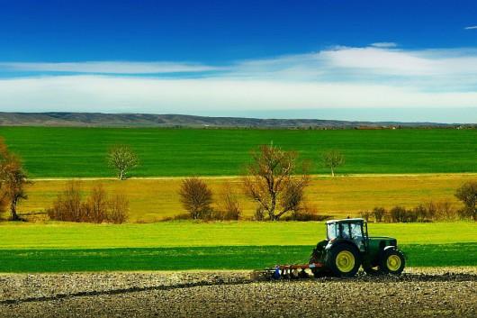 Sejm podjął ustawę o wstrzymaniu handlu ziemią rolną