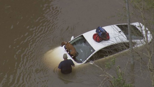 USA - Obfite opady deszczu i błyskawiczna powódź w Teksasie -16