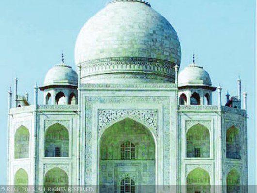 Indie - Podobne do komarów owady pokrywają marmury Tadż Mahal zielono-czarną wydzieliną -3
