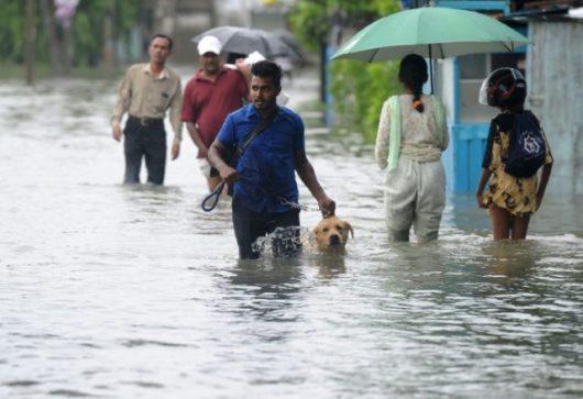 Sri Lanka - W ciągu doby spadła ogromna ilość deszczu -3
