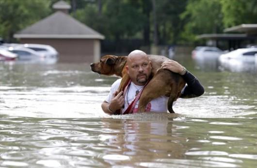 USA - Ogromne opady deszczu w Teksasie -5