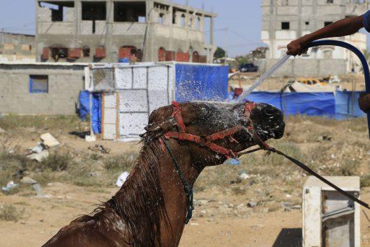 AP APTOPIX Mideast Palestinians Heat Wave