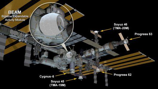 W pełni rozwinięty moduł dołączony do ISS Kredyt: NASA