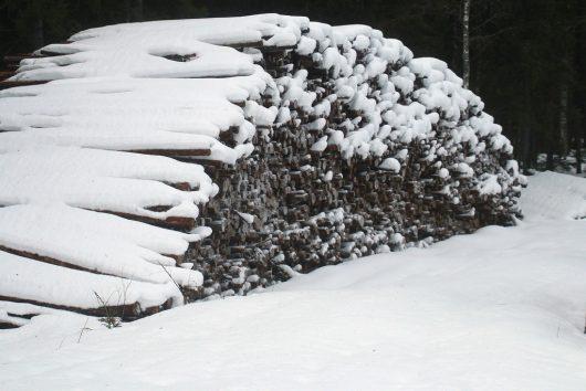 Finlandia - Burza śnieżna w czerwcu -1