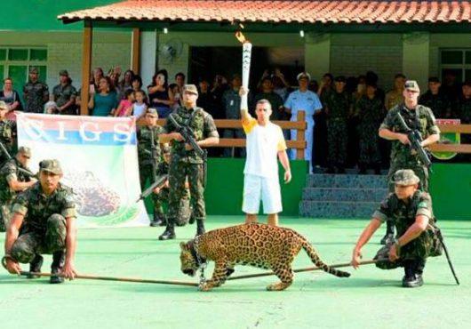 Manaus, Brazylia - Jaguar Juma brał udział w ceremonii zapalenia znicza olimpijskiego -2