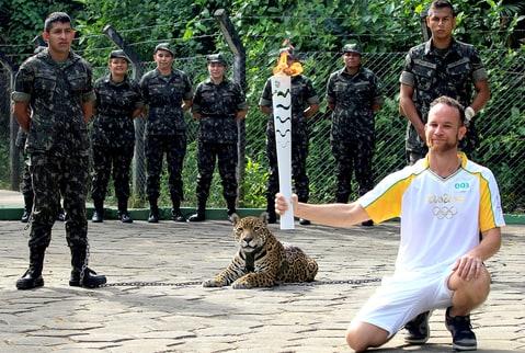 Manaus, Brazylia - Jaguar Juma brał udział w ceremonii zapalenia znicza olimpijskiego -6