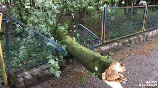 Polska - Gwałtowne burze przeszły w wielu miejscach kraju -4