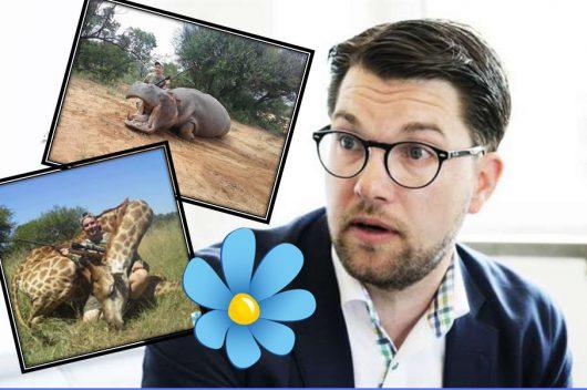 Szwecki polityk chwali się zabitymi zwierzętami w Afryce -4