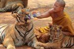Tajlandia - Buddyjska świątynia w Kanchanaburi