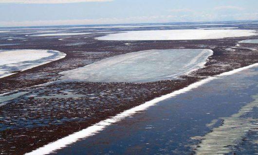 Topnieją zmarzliny płytkich jezior /Christopher ARP, University of Alaska Fairbanks