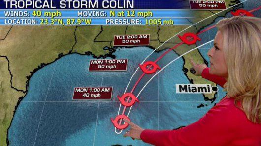 USA - Sztorm tropikalny Colin atakuje Florydę -3