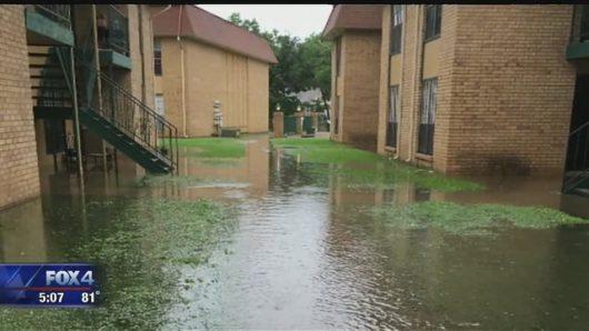 USA - Ulewne deszcze spowodowały powódź w Teksasie -10