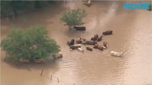 USA - Ulewne deszcze spowodowały powódź w Teksasie -11