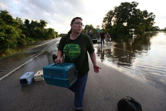 USA - Ulewne deszcze spowodowały powódź w Teksasie -6