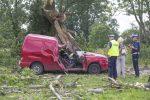 Zgierz, 17.06.2016. Miejsce wypadku w Zgierzu, 17 bm. Jedna osoba nie żyje, a dwie zostały ranne, gdy konar drzewa spadł na jadący samochód. Do wypadku doszło w wyniku wichury, jaka przeszła w piątek nad Łodzią i regionem. PAP