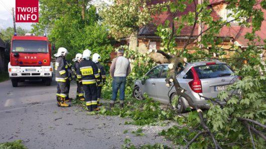 Wichura w Polsce 2016.06.17 -4