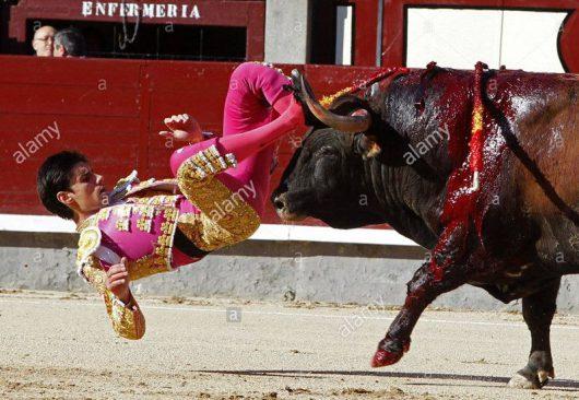 Hiszpania - Matador miał walczyć z bykiem, a na końcu zadać mu śmiertelny cios szpadą -2