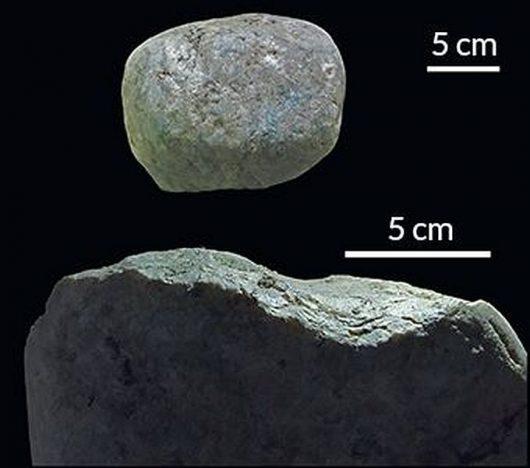 """Kamienne """"kowadło"""" (na dole) i """"młot"""" (na górze) znalezione przez zespół badaczy w warstwie osadów które sięgają 593 do 750 lat i są podobne do kamieni jakich kapucynki używają obecnie do rozbijania orzechów nerkowca. M. HALSAM WSP/ CURRENT BIOLOGY 2016"""