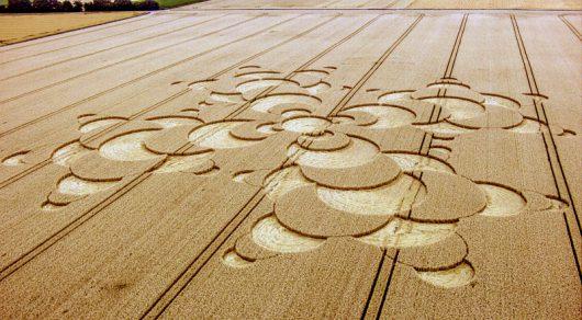 Mammendorf, Niemcy - Kręgi na polu kukurydzy w Bawarii -2