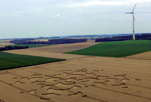 Mammendorf, Niemcy - Kręgi na polu kukurydzy w Bawarii -3