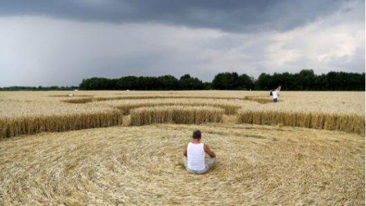 Mammendorf, Niemcy - Kręgi na polu kukurydzy w Bawarii -5