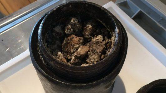 We wraku szwedzkiego okrętu Kronan znaleziono prawdopodobnie ser sprzed 340 lat