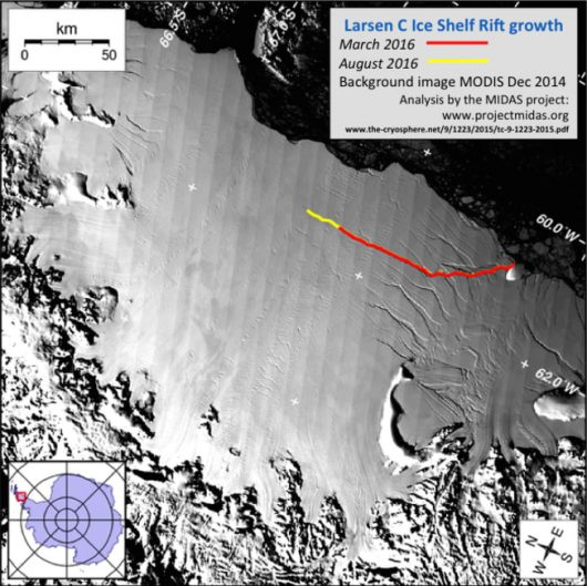 Antarktyda - Gwałtownie zaczął pękać lodowiec szelfowy Larsen C -1