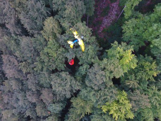 Degenfeld, Niemcy - Samolot zawisł na drzewie -2