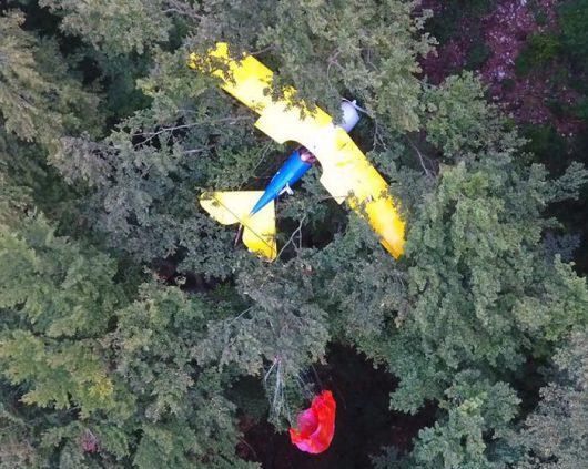 Degenfeld, Niemcy - Samolot zawisł na drzewie -3