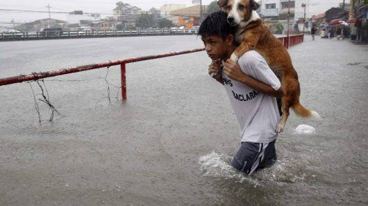 Filipiny - Siedemdziesiąt tysięcy osób ewakuowanych -7