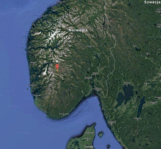 Norwegia - Pioruny zabiły 322 renifery na płaskowyżu Hardangervidda -4