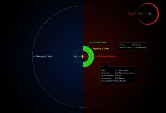 Porównanie parametrów Układu Słonecznego i systemu wokół Proxima Centauri /ESO/M. Kornmesser/G. Coleman /materiały prasowe
