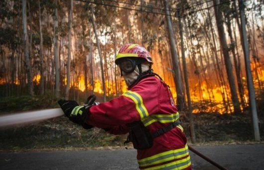 Portugalia - Ponad cztery tysiące strażaków walczy z 702 pożarami lasów -2