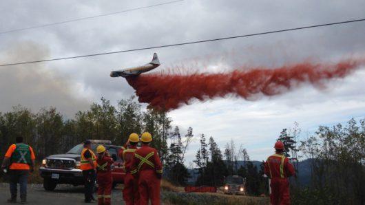Portugalia - Ponad cztery tysiące strażaków walczy z 702 pożarami lasów -3