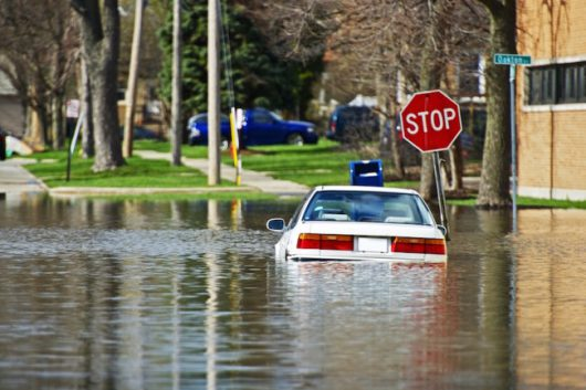 Rosja - Moskwa pod wodą, największa ulewa od 137 lat -17
