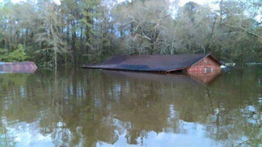 USA - Luizjana pod wodą -35