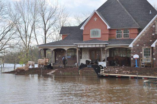 USA - Luizjana pod wodą -7