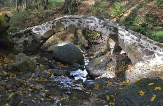 W lasach wokół miejscowości Zavidovići przetrwało 15 tajemniczych kamieni