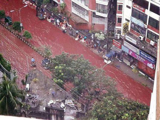 dhaka-bangladesz-krew-zabijanych-zwierzat-zabarwila-potoki-powodziowe-2
