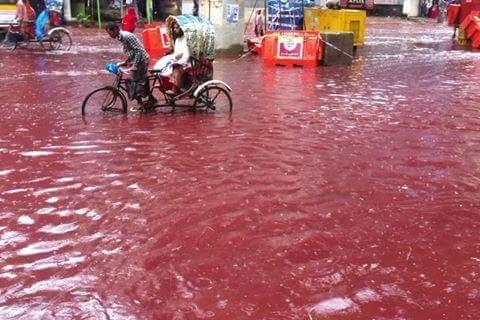 dhaka-bangladesz-krew-zabijanych-zwierzat-zabarwila-potoki-powodziowe-3
