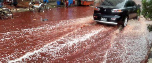 dhaka-bangladesz-krew-zabijanych-zwierzat-zabarwila-potoki-powodziowe-4