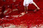 dhaka-bangladesz-krew-zabijanych-zwierzat-zabarwila-potoki-powodziowe-5